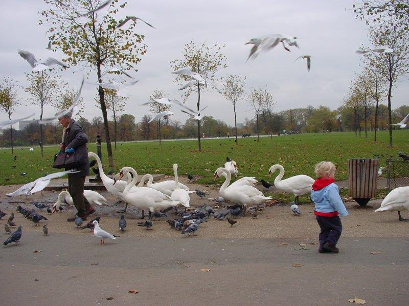 Ian plays with the birds at Kensington Gardens.
